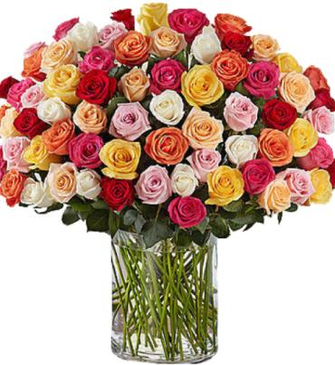 One Hundred Premium Multi-Color Roses