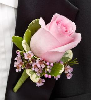 Rose Boutonniere, Pink