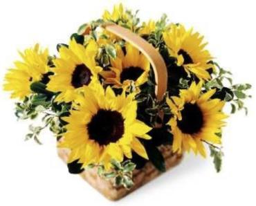 Sunflower Basket™