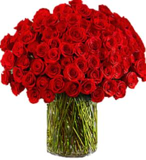 One Hundred Premium Red Roses