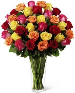 36 Premium Multi Color Roses